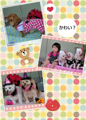 Photogrid_1381709244813_2