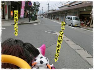 Photo_86
